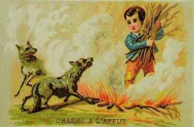 Lot of 6 French Victorian Cards Wolves Fire Children Bear Hunting Dog Bird P97