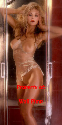 PLAYBOY PLAYMATE CENTERFOLD POSTER PRINT Monique Noel POSTER (Size/Type)