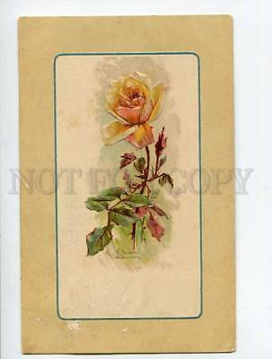 3051532 Embossed ROSES Flower in Glass by C. KLEIN vintage RPPC
