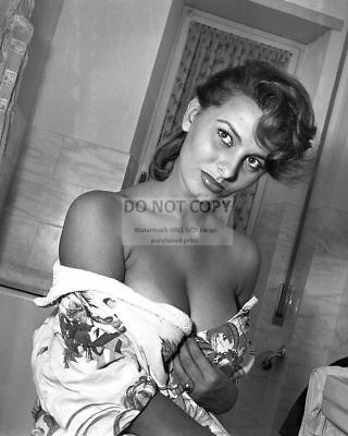 Sophia Loren Legendary Actress Pin Up - 8X10 Publicity Photo (Cc999)