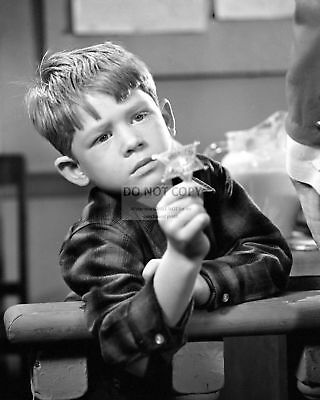 Ronny Howard Opie In The Andy Griffith Show 8x10 Publicity