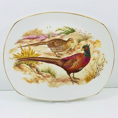 HARRY HANCOCK Tunstall China Oval PHEASANT PLATE Gold Trim