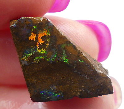 Australian Boulder Opal, Solid Natural Unpolished Rough Gemstone, Specimen 9181