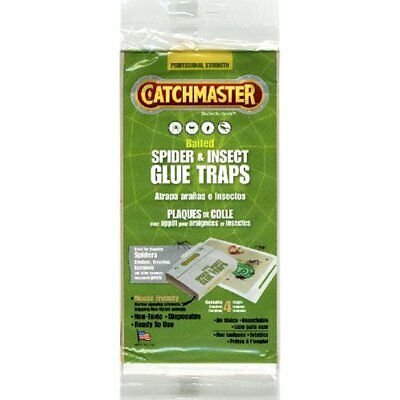 Traps Catchmaster Spider Insect Glue Professional Strength Per Package