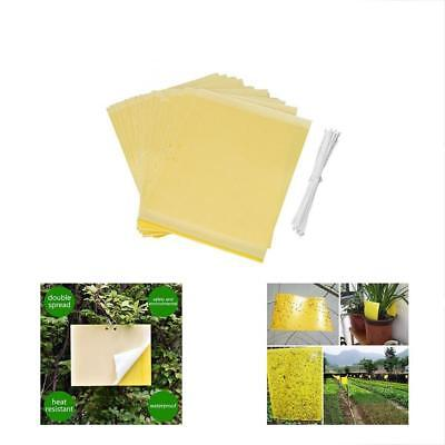 Lures 24-pack Dual-Sided Yellow Sticky Traps For Flying Plant Insect Twist Ties