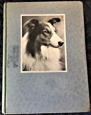 Dogs You'd Like To Meet ~ Rowland Johns Vintage Book ~ Mostly True Stories 1933