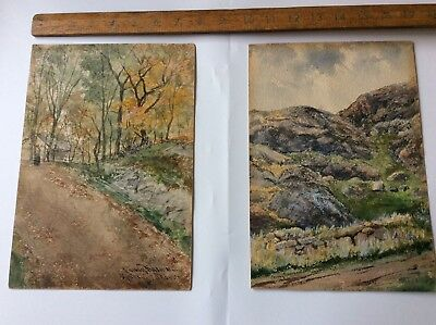 Original Antique Pair of Landscape Watercolour Painting Rural 1894