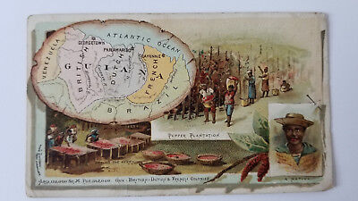Arbuckles Coffee Card 1889 Map Guiana