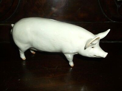 Lovely Model Beswick Pig Ch Wall Queen 40 Beautifully Hand Painted + Backstamp