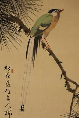 "JAPANESE HANGING SCROLL ART Painting ""Bird on Pinetree"" Asian antique  #E2518"