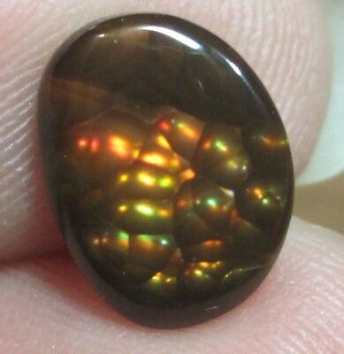 MEXICAN Fire Agate Gemstone Freeform all  Natural Multicolored 10x8