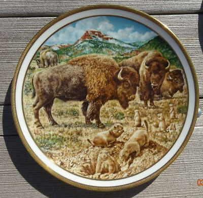 Buffalo Bison By Norman Adams - 1982 Lenox American Wildlife Plate Collection