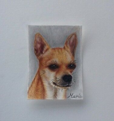 Chihuahua ACEO Original Portrait In Mixed Media
