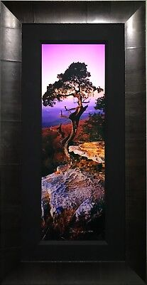 """Peter Lik signed, numbered Limited Edition photograph, """"Earth's Elder"""" 1.0 Meter"""