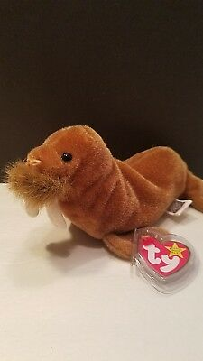 Ty beanie babies Paul the Walrus. 1999 mint condition
