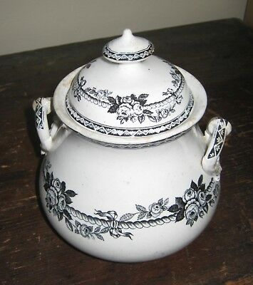 """Antique 1800s large floral transfer ware pottery sugar bowl 7"""" with lid, handles"""