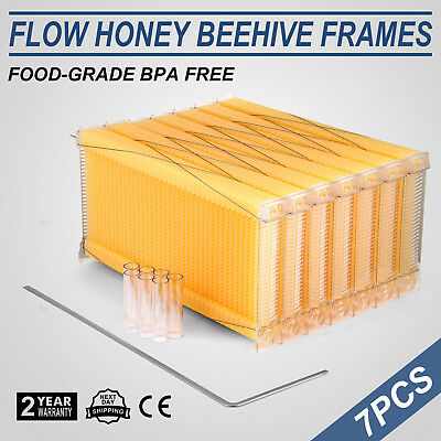 Beekeeping Flowing Hive Seven 7pc Frames With Box Auto Honey Harvesting New Bee