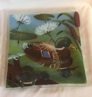 """Peggy Karr Duck Plate 10"""""""