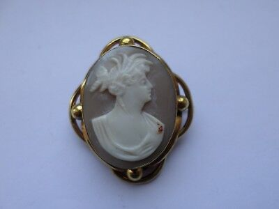 An antique Victorian or Edwardian natural shell cameo brooch