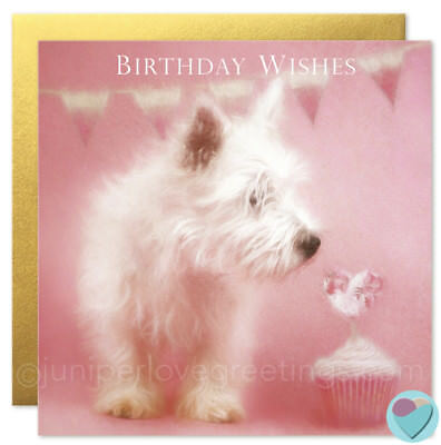 Westie Birthday Card West Highland White Terrier Dog Puppy Lover Uk