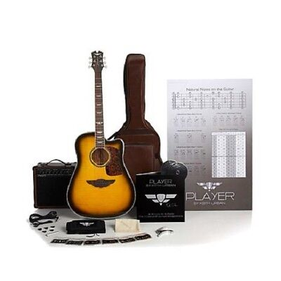 Keith Urban 50-piece Deluxe PLAYER Acoustic-Electric Guitar Brazilian Burst (Rig
