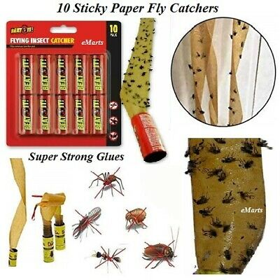 8 x STICKY FLY BUG WASP PAPER CATCHER TRAP INDOOR GREENHOUSE FLY CATCHERS NEW