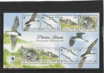 Pitcairn Islands 2016  Phoenix Petrel M/Sheet   MNH