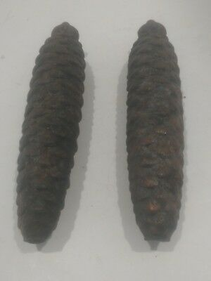vintage pair of 8 day pine cone weights