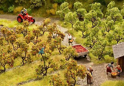 NOCH - 21532 Plantation Trees with Apples H0,TT