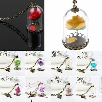 Hot!Fashion Colorful Handmade Dried Flower Glass Bottle Pendant Chain Necklace
