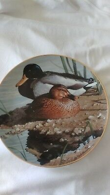 MALLARD PAIR American Waterbirds Collector Plate LE #1750B by Rod Lawrence