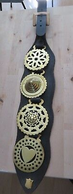 Very Nice Martingale with big buckle and 4 brasses Very decorative and pretty