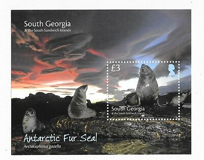 South Georgia and SSI 2018 NEW ISSUE Antarctic Fur Seals  M/S MNH