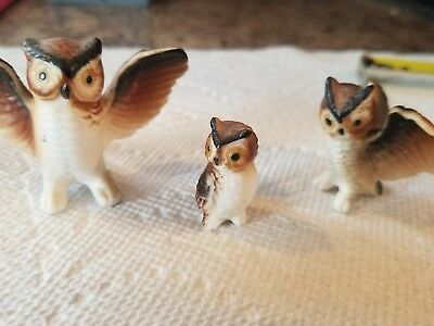 SET OF 3 Vintage Miniature Bone China OWLS Figurines Made In Japan