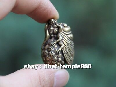 3.8 CM Bronze Chinese Animal insect cicada fruit Wealth Fengshui Amulet Pendant