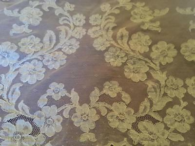 Rare Antique French Alencon Net Lace Curtain Panel Tulle - Unusual Find!
