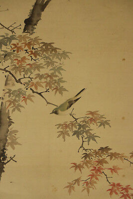 """JAPANESE HANGING SCROLL ART Painting """"Nightingale and redleaves""""  #E2902"""