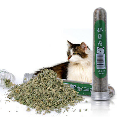 One Bottle 40ml Pure Natural Loose Catnip Pet Kitten Cat Mint Toys Cat Supplies