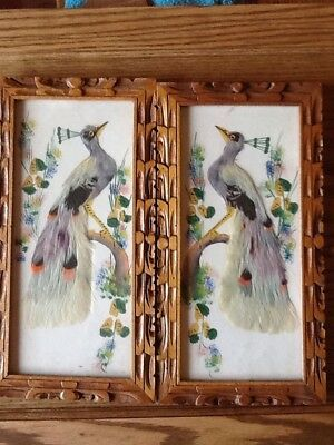 Pair of Vintage 1920s Mexican Feather Art Peacock Bird Hand Painted & Framed