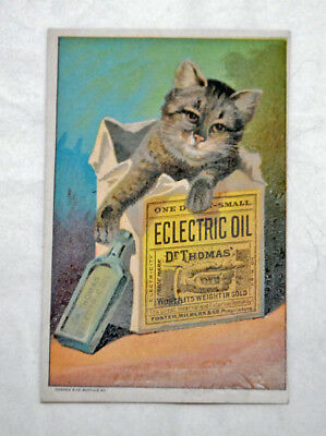 Cat Victorian Trade Card,  Dr. Thomas' Eclectric Oil, Cat