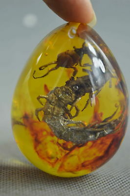 China Collectable Decorative Amber Inner Inlay Centipede Lucky Fashion Pendant