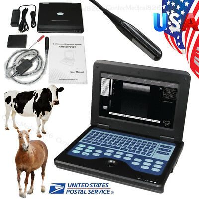 Veterinary Portable Ultrasound Scanner Rectal Linear Probe Horse Cow Big Animals