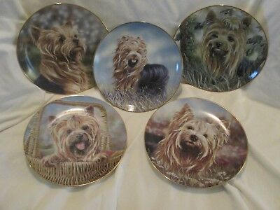 Set of 5 Danbury Mint Yorkshire Terrier decorative plates ready to hang