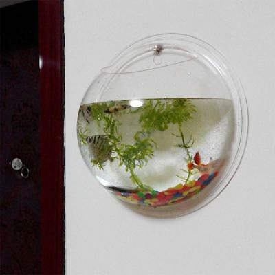 Home Garden Decor Pot Wall Mounted Hanging Bubble Bowl Fish Tank Aquarium New