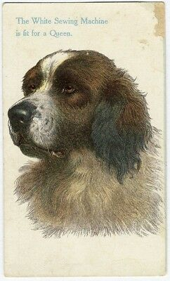St. Bernard Dog WHITE SEWING MACHINE Victorian Trade Card c 1880's