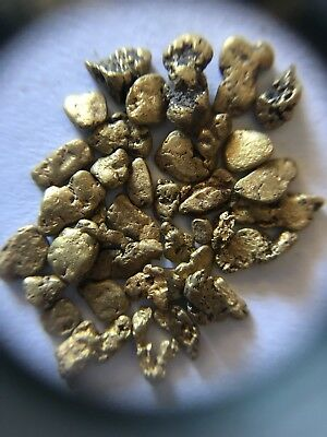 NSW Gold Nuggets 5.55g