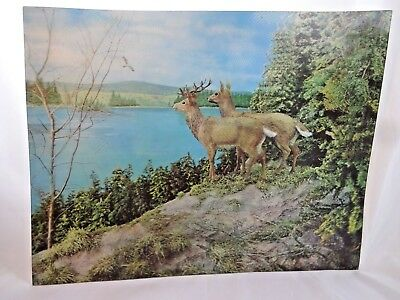 """Vintage Mid Century 13"""" Lenticular 3D Print Picture Lakeside Deer Whitetail"""