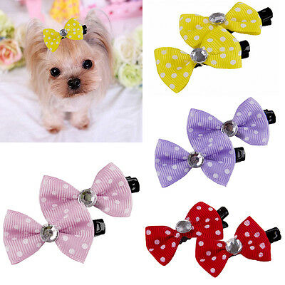10pcs Colorful Pet Grooming Accessories Cat Dog Hair Bows Hair Clips For Pe P: