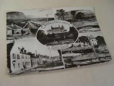 OZ1150 - RP Postcard - Greetings from Golspie