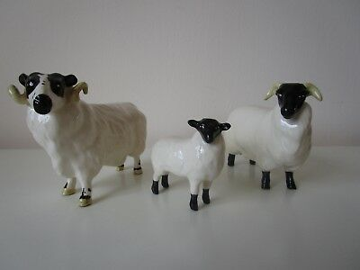 Beswick Sheep - family of three 1765, 1828 & 3071 Perfect condition. Vintage